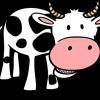和牛と国産牛の違いは?分かって食べれば美味しさ倍増!