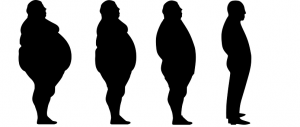 lose-weight-1911605__340