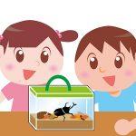 カブトムシって卵を何個産むの?答えを知って超驚いた!