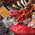 秋の魚といえば何?絶対美味しいトップ10を紹介するよ!