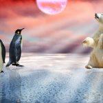北極と南極の違いって何?徹底調査したら驚きの連続だった!