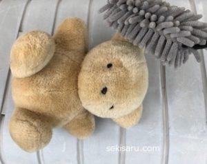クマのぬいぐるみのほこりを取る