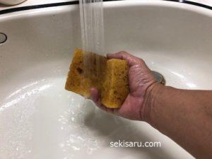スポンジを真水で濡らす